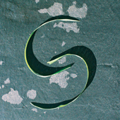 _heilsame Präsenz logo